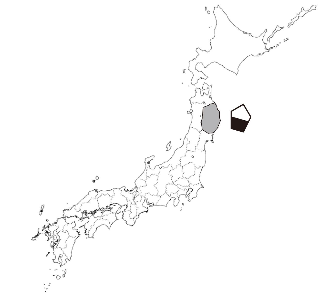 県南伝統工芸協議会_S3.jpg